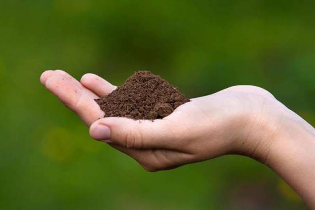 Как правильно рассыпать землю на могиле после заочного отпевания
