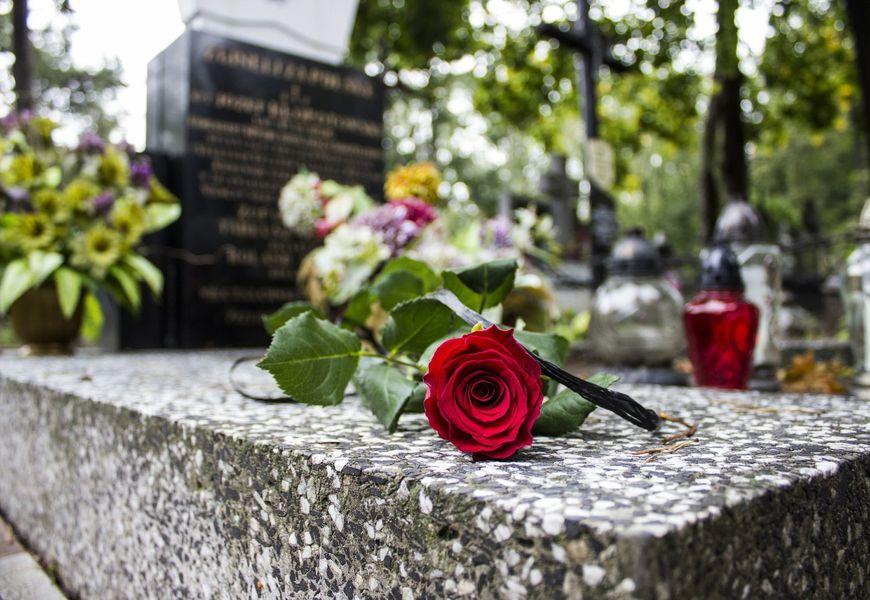 Памятник на кладбище розы
