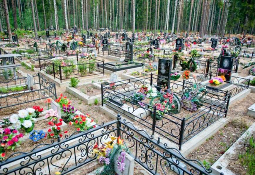 ТОП-20 самых больших кладбищ мира южное кладбище в Санкт Петербурге 01