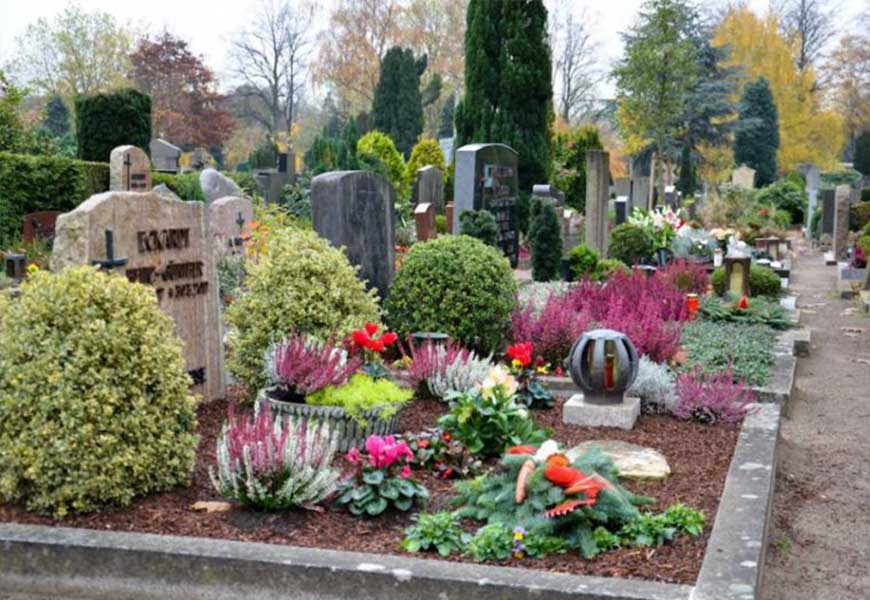 Использование кустарников в оформлении могилы