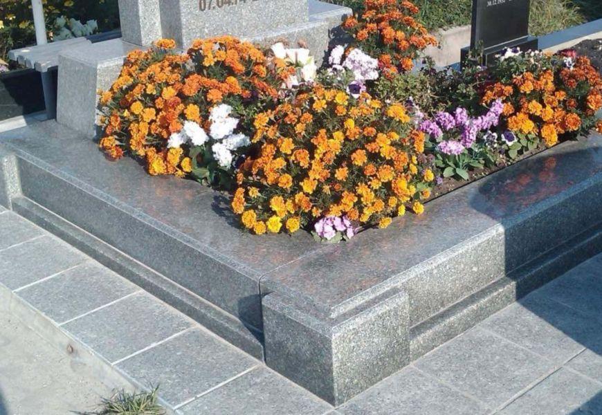 Бархатцы на кладбище