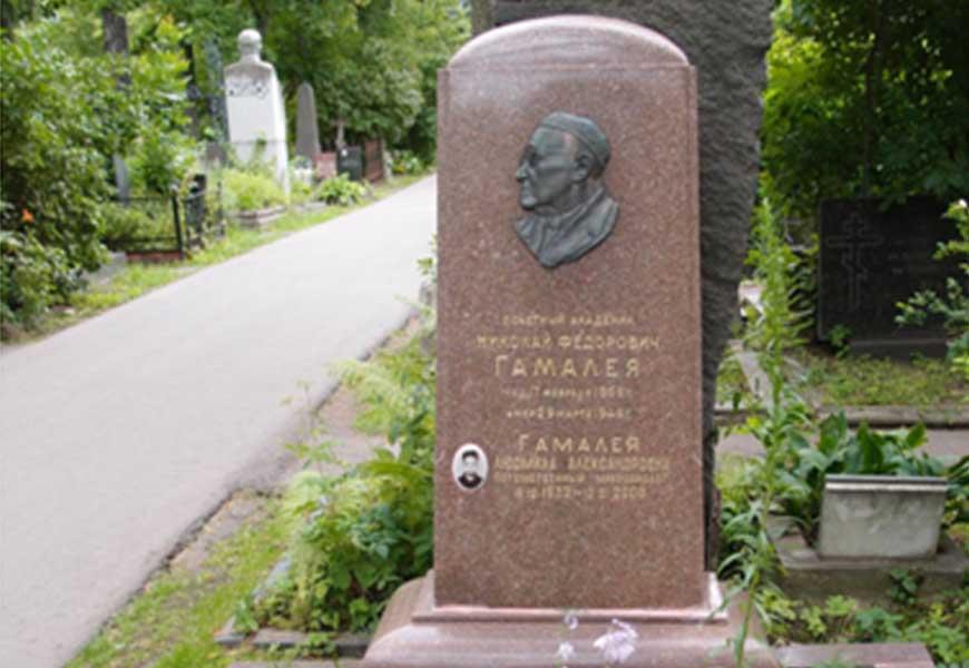 могила Николая Гамалея